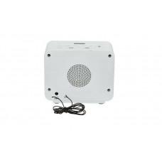 Bush 2 USB FM Radio Alarm Clock - White